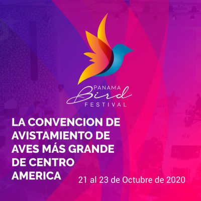 Panama Bird Festival 2020